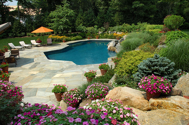 Oasis Pool Landscaping Ideas